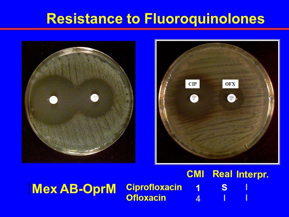 Resistance to Fluoroquinolones Ciprofloxacin Ofloxacin 1414 CMI IIII Interpr. SISI Real Mex AB-OprM CIPOFX