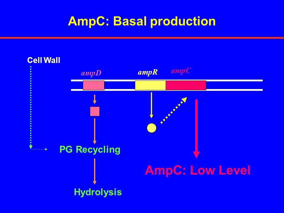 VIM METALLO- -LACTAMASES MIC VALUES IMPMPM P.aeruginosa (VIM-1)>128128->128 E.