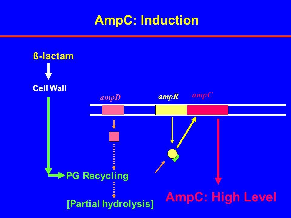 Antimicrobial AgentmexAB-OprM mexAB-oprM Nalidixic Acid5122 Ciprofloxacin0.250.008 Tetracycline641 Chloramphenicol5124 Amoxicillin640.13 Piperacillin80.06 Carbenicillin1280.25 Ceftazidime20.25 Cefepime20.06 Meropenem10.016 CONSTITUTIVE EXPRESSION OF EFFLUX PUMP(S) IN P.