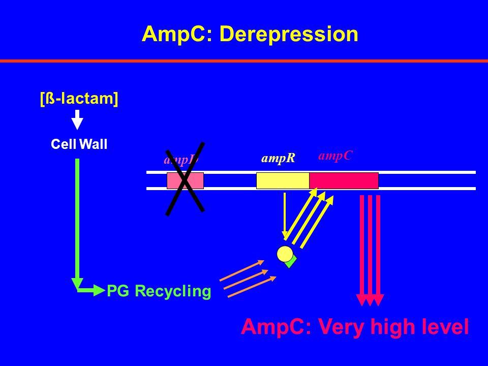 AmpC: Resistance phenotypes TICPIPCAZCPMCBPM INDUCIBLE PRODUCTION SSSSS/r PARTIAL DEREP.SIIIS/r TOTAL DEREP.IRRRS/R