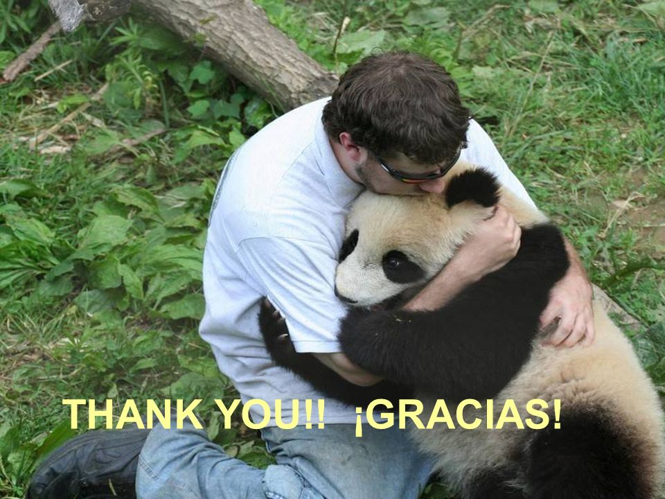 THANK YOU! ¡GRACIAS!!