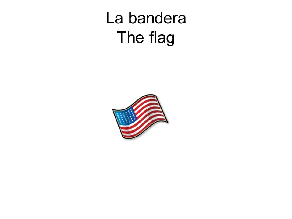 La bandera The flag