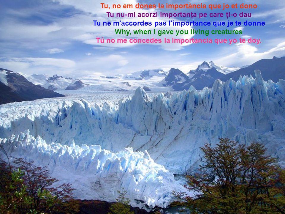 Per la meva desgràcia Din nefericire pentru mine, Pour mon malheur, For my misfortune, Para mi desgracia,
