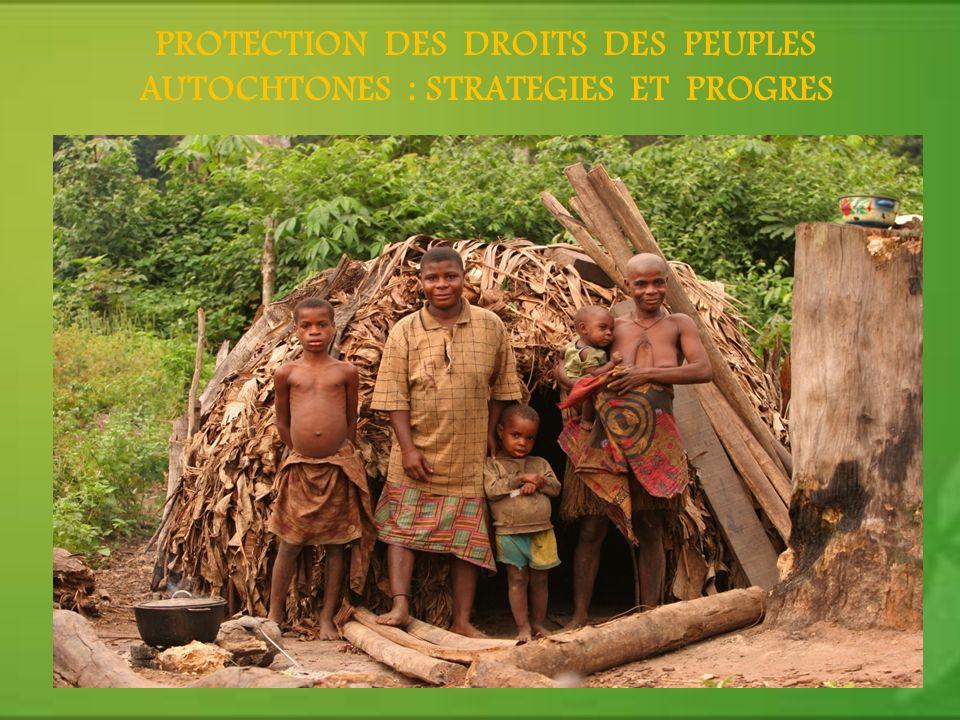 PROTECTION DES DROITS DES PEUPLES AUTOCHTONES : STRATEGIES ET PROGRES