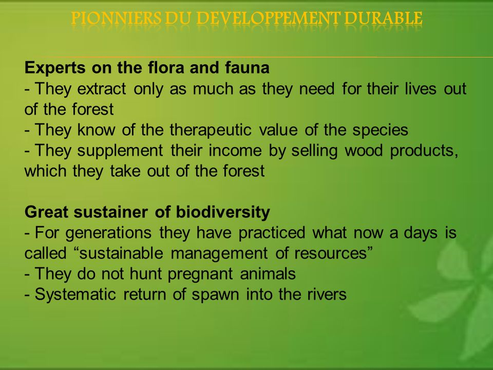 Experts on the flora and fauna - They extract only as much as they need for their lives out of the forest - They know of the therapeutic value of the species - They supplement their income by selling wood products, which they take out of the forest Great sustainer of biodiversity - For generations they have practiced what now a days is called sustainable management of resources - They do not hunt pregnant animals - Systematic return of spawn into the rivers