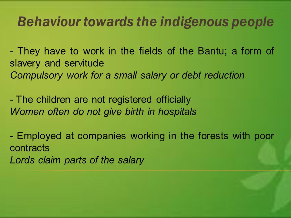 Behaviour towards the indigenous people - They have to work in the fields of the Bantu; a form of slavery and servitude Compulsory work for a small salary or debt reduction - The children are not registered officially Women often do not give birth in hospitals - Employed at companies working in the forests with poor contracts Lords claim parts of the salary