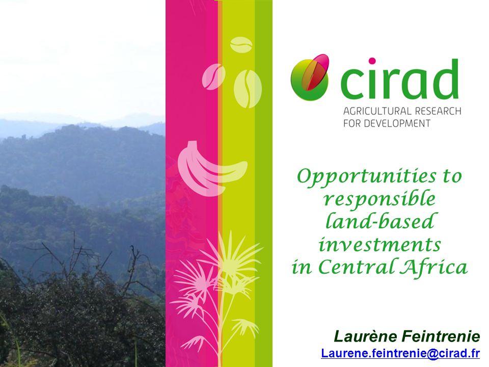 Cameroon SG-SOC, Herakles Farms oil palm plantation