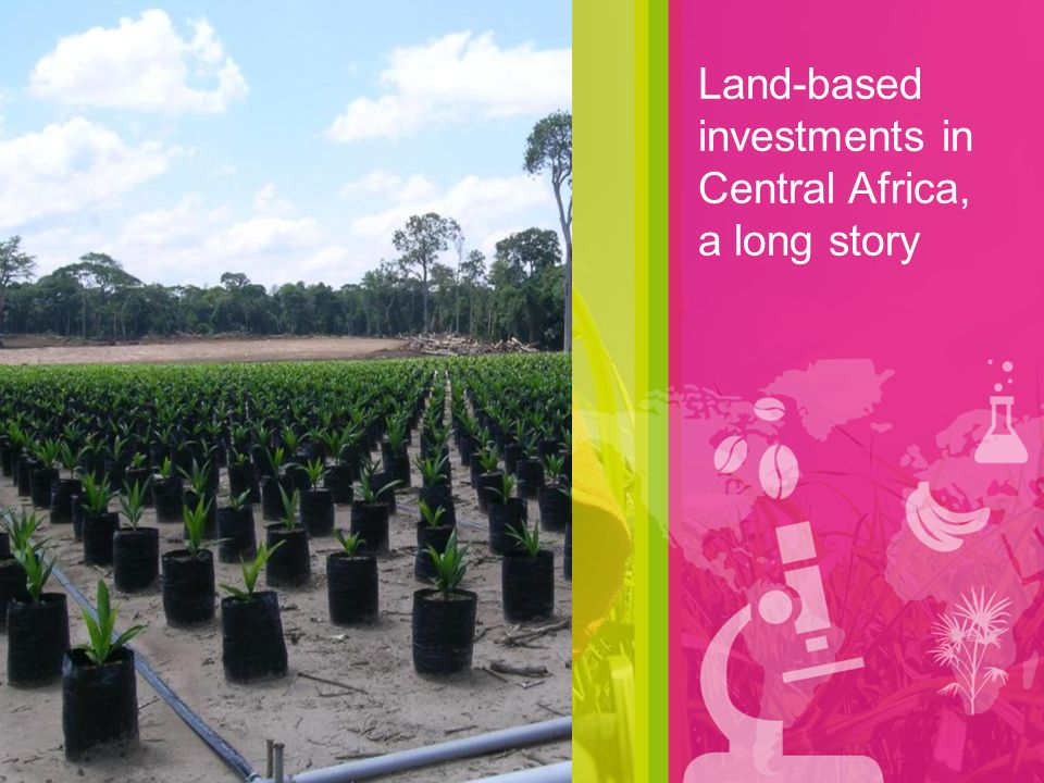 Land-based investments in Central Africa, a long story