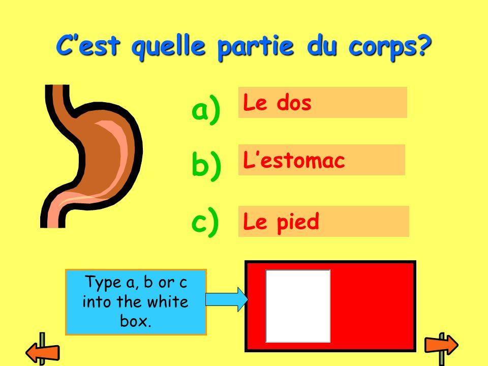 La tête Le dos Lestomac Cest quelle partie du corps? a) b) c) Type a, b or c into the white box.