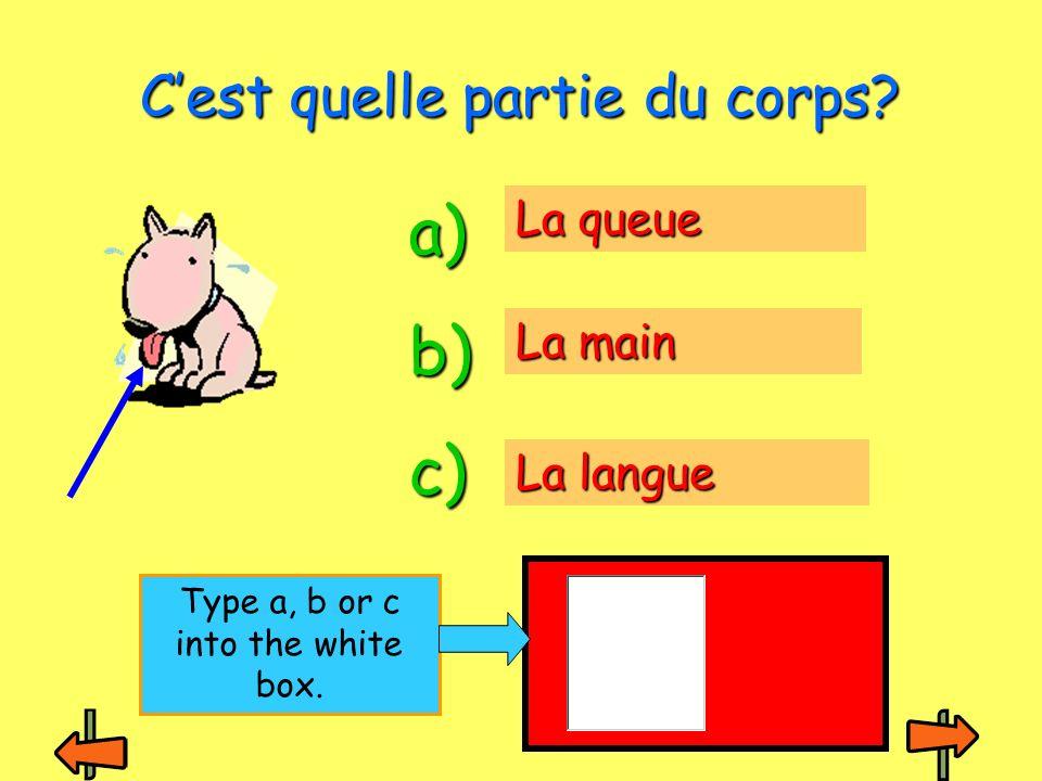 Le dos Lestomac Le pied Cest quelle partie du corps? a) b) c) Type a, b or c into the white box.