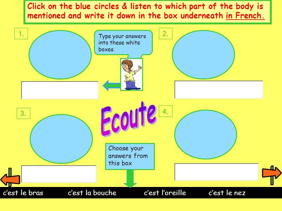 La queue La main La langue Cest quelle partie du corps? a)b)c) Type a, b or c into the white box.