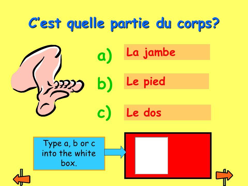 La tête Le doigt Le bras Cest quelle partie du corps? a) b) c) Type a, b or c into the white box.
