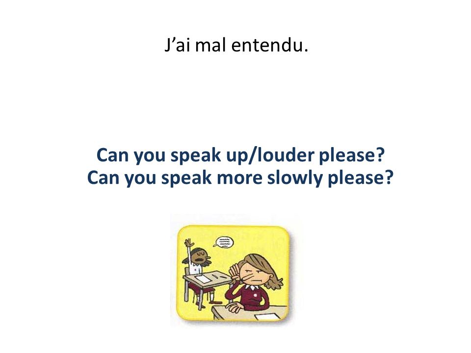 Je nai pas compris. I didnt/ dont understand./ What do you mean?