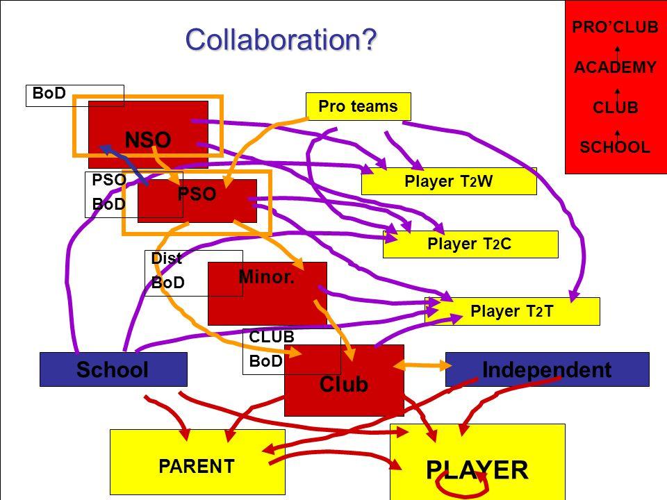 Un pays, une vision, un système One country, one vision, one system Au Canada le sport cest pour la vie NSO PSO Minor.
