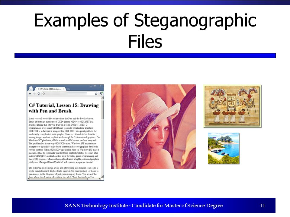 SANS Technology Institute - Candidate for Master of Science Degree 11 Examples of Steganographic Files