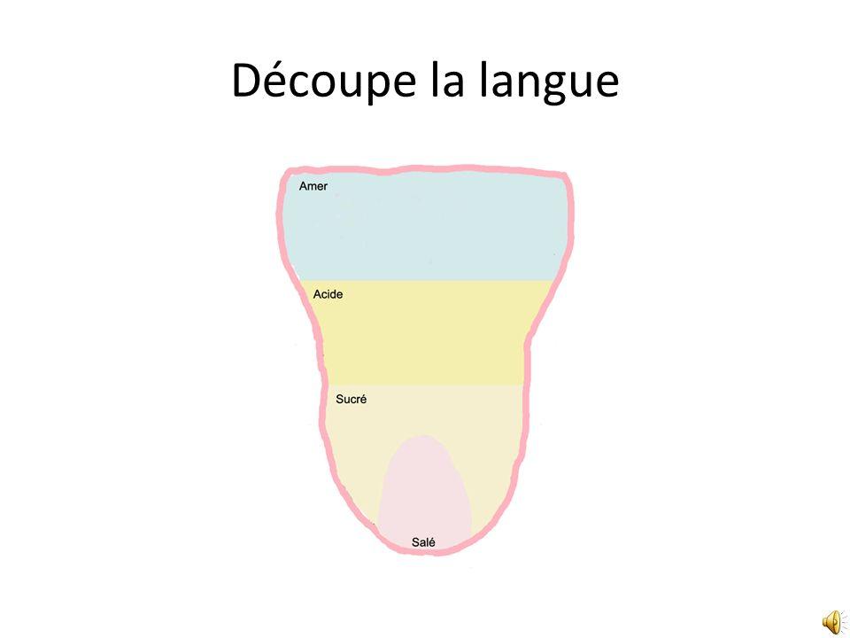 Découpe la langue