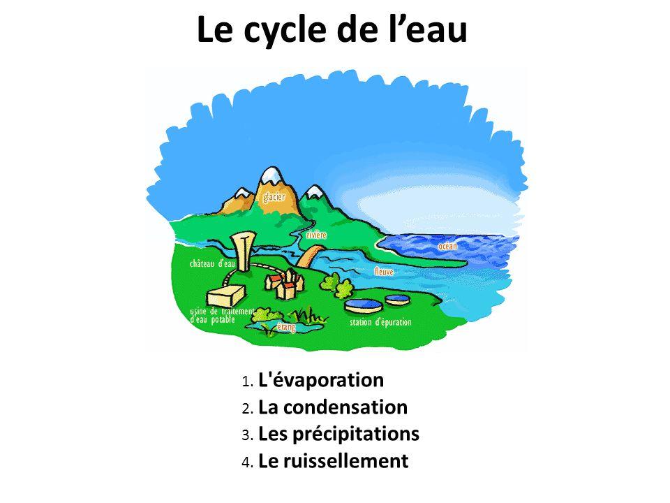 Le cycle de leau 1. L évaporation 2. La condensation 3. Les précipitations 4. Le ruissellement