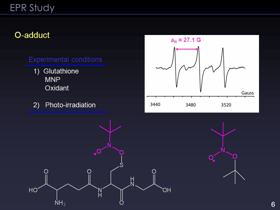 1) Glutathione MNP Oxidant 2) Photo-irradiation EPR Study O-adduct a N = 27.1 G Experimental conditions 6