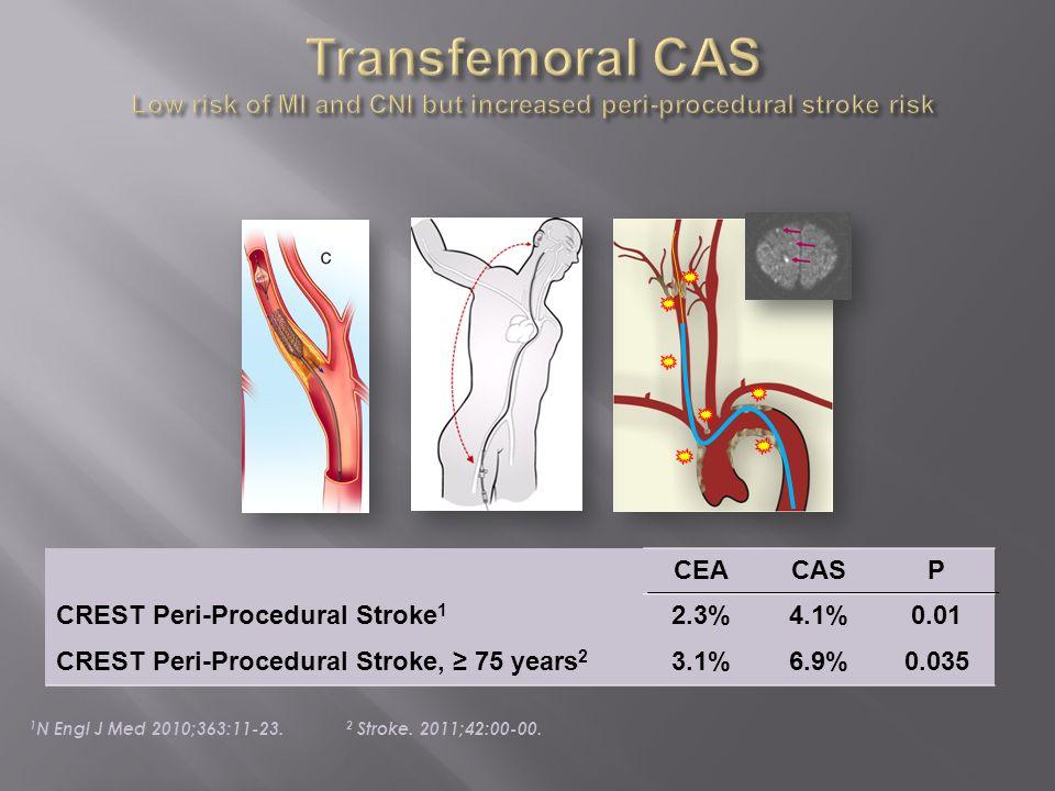 CEACASP CREST Peri-Procedural Stroke 1 2.3%4.1%0.01 CREST Peri-Procedural Stroke, 75 years 2 3.1%6.9%0.035 1 N Engl J Med 2010;363:11-23. 2 Stroke. 20
