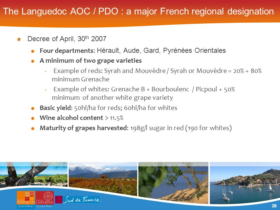 28 The Languedoc AOC / PDO : a major French regional designation Decree of April, 30 th 2007 Four departments: Hérault, Aude, Gard, Pyrénées Orientales A minimum of two grape varieties Example of reds: Syrah and Mouvèdre / Syrah or Mouvèdre = 20% + 80% minimum Grenache Example of whites: Grenache B + Bourboulenc / Picpoul + 50% minimum of another white grape variety Basic yield: 50hl/ha for reds; 60hl/ha for whites Wine alcohol content > 11.5% Maturity of grapes harvested: 198g/l sugar in red (190 for whites)
