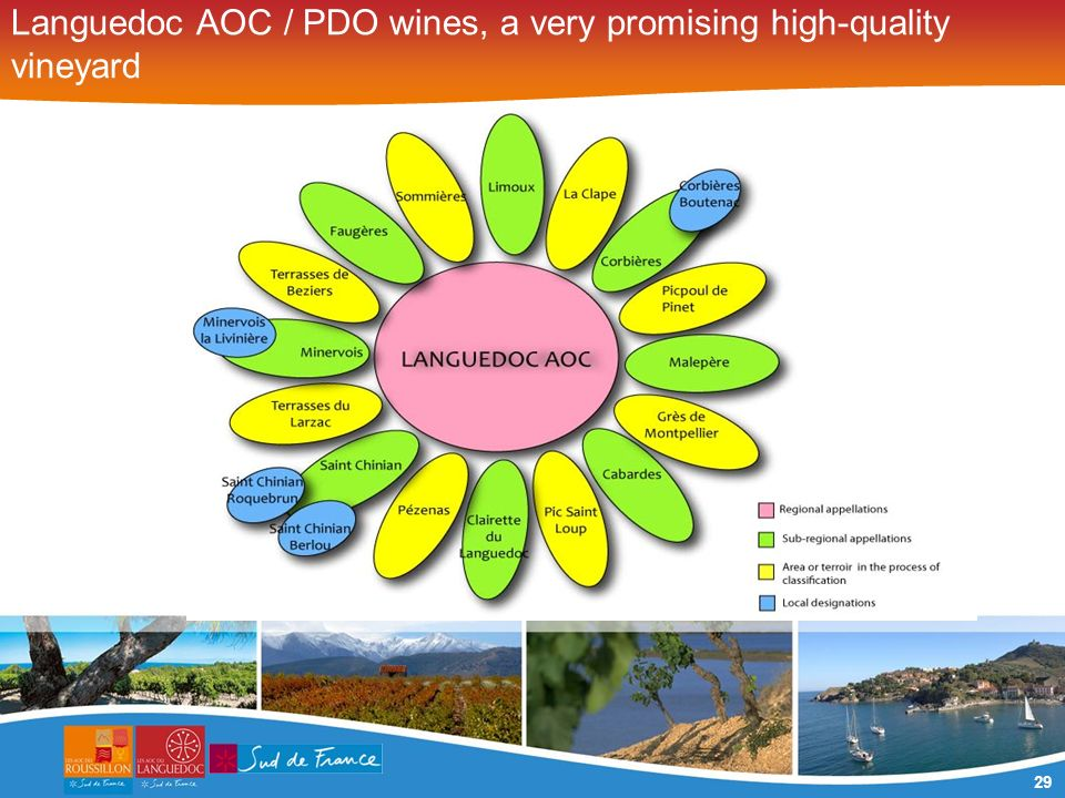 29 Languedoc AOC / PDO wines, a very promising high-quality vineyard