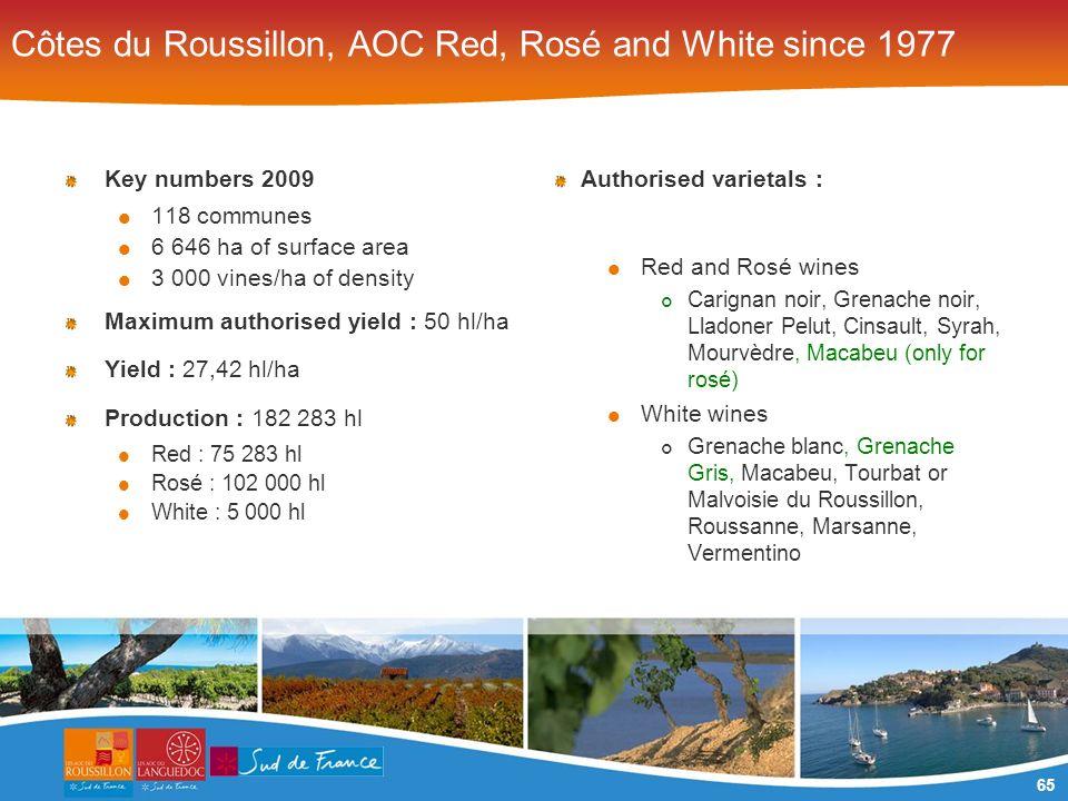65 Côtes du Roussillon, AOC Red, Rosé and White since 1977 Key numbers 2009 118 communes 6 646 ha of surface area 3 000 vines/ha of density Maximum au