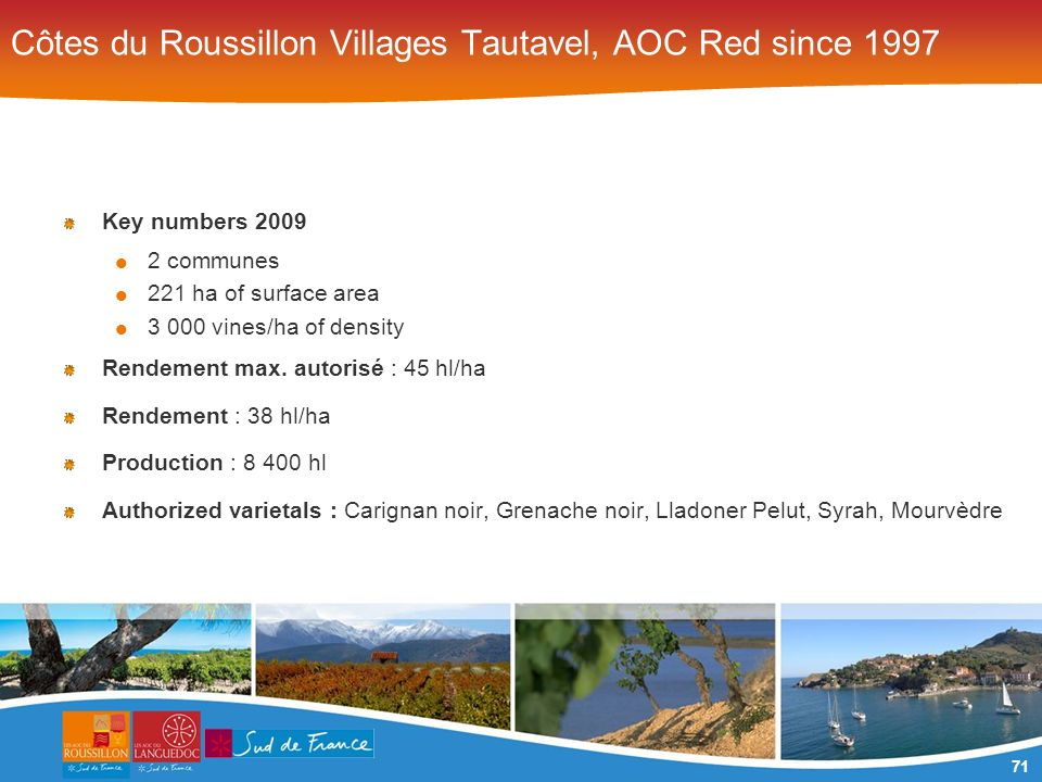71 Côtes du Roussillon Villages Tautavel, AOC Red since 1997 Key numbers 2009 2 communes 221 ha of surface area 3 000 vines/ha of density Rendement max.