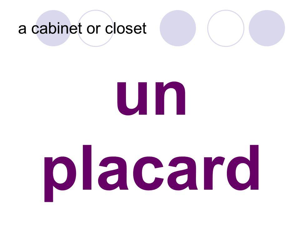 un placard a cabinet or closet
