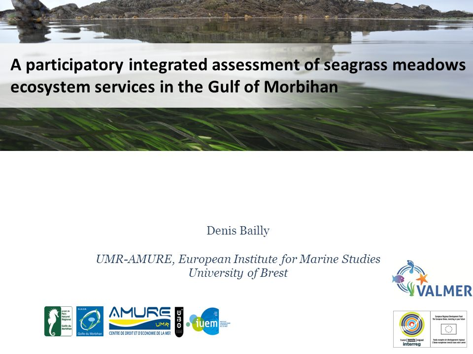 A participatory integrated assessment of seagrass meadows ecosystem services in the Gulf of Morbihan Denis Bailly UMR-AMURE, European Institute for Marine Studies University of Brest