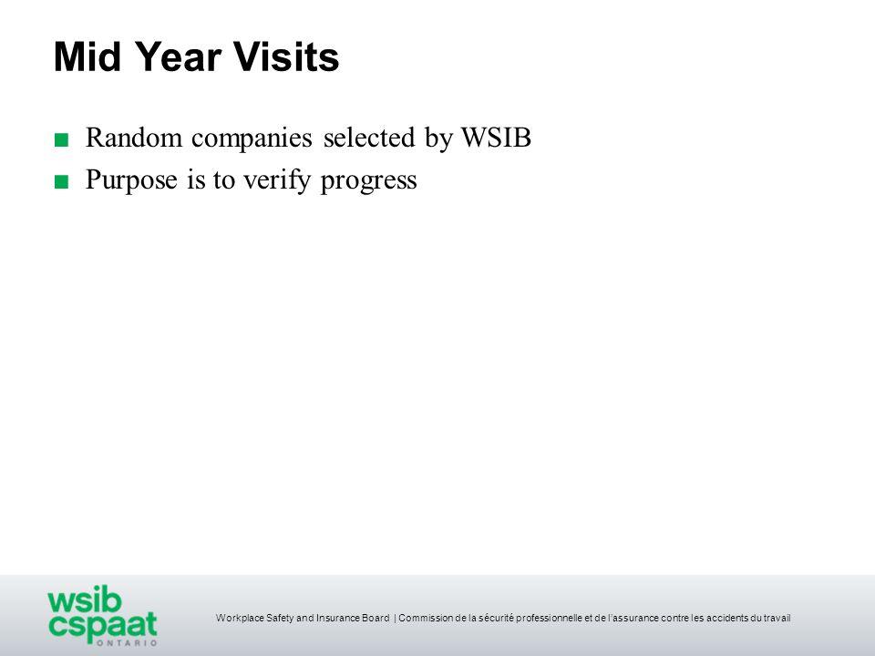Mid Year Visits Random companies selected by WSIB Purpose is to verify progress