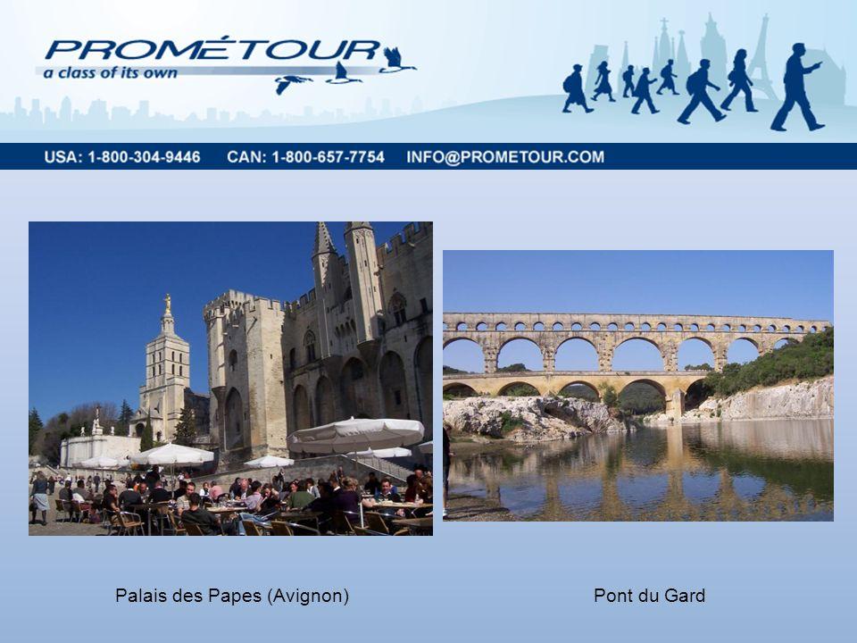 Palais des Papes (Avignon)Pont du Gard