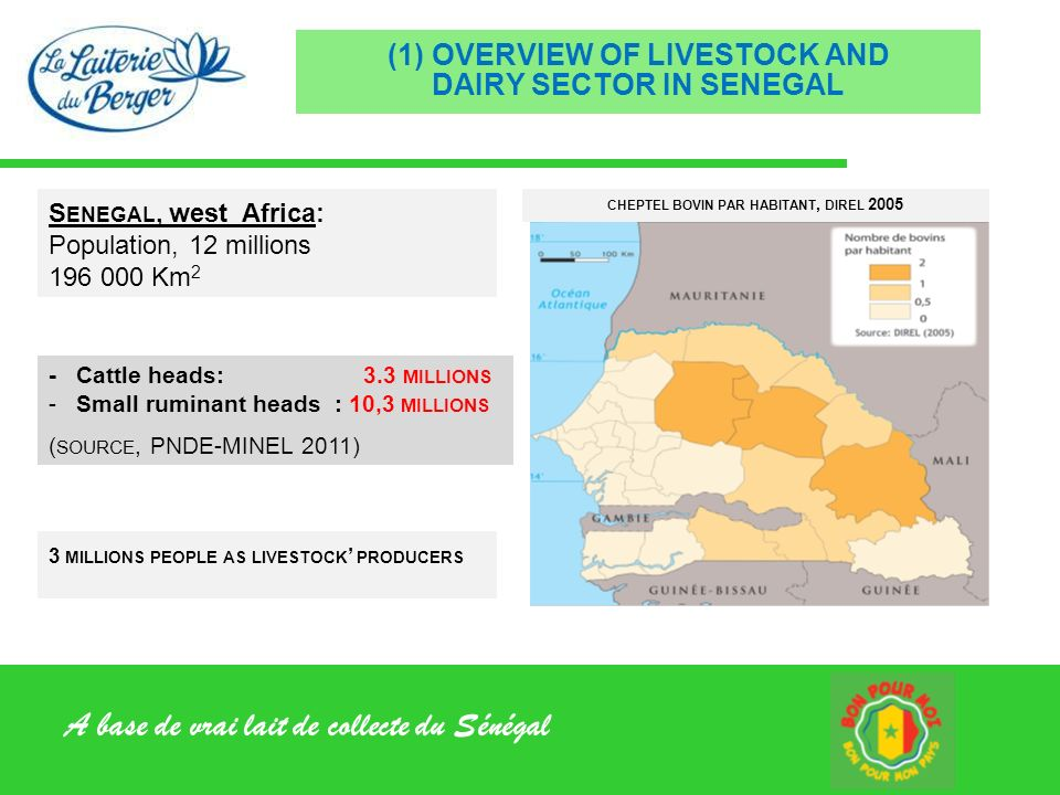 A base de vrai lait de collecte du Sénégal (1) OVERVIEW OF LIVESTOCK AND DAIRY SECTOR IN SENEGAL CHEPTEL BOVIN PAR HABITANT, DIREL 2005 - Cattle heads