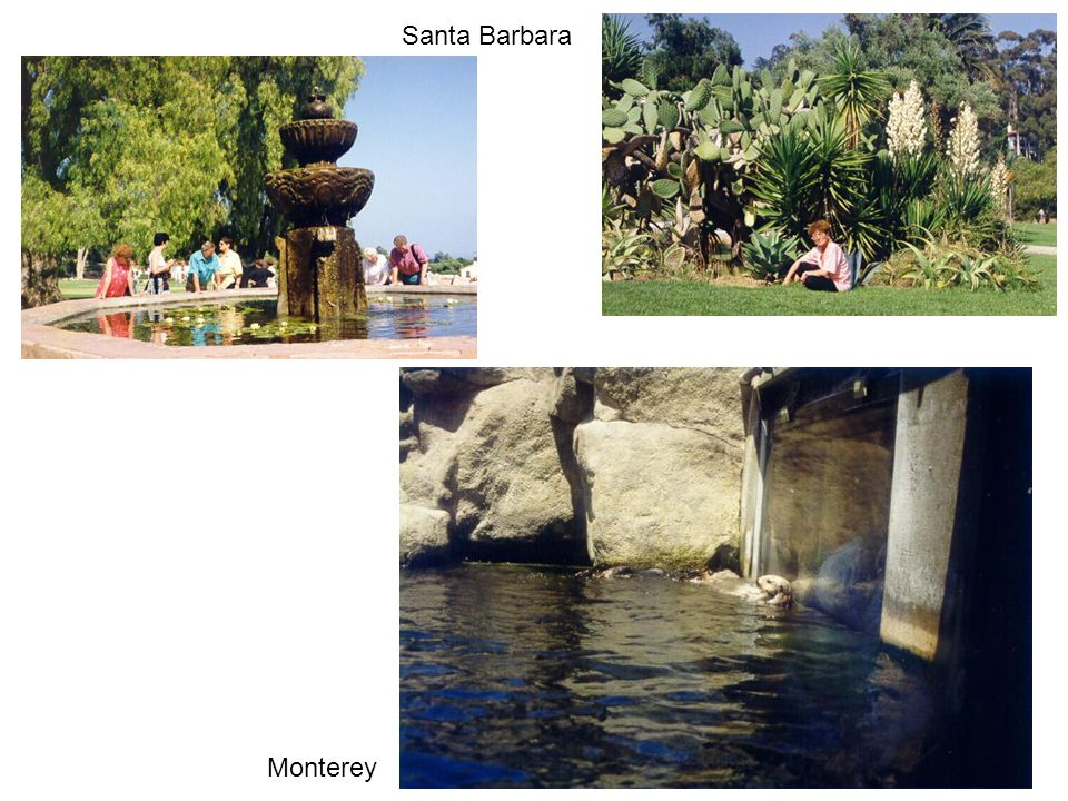Santa Barbara Monterey