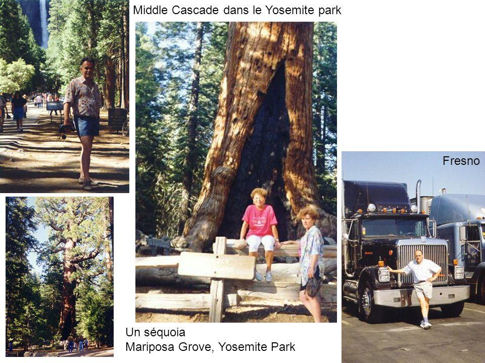Middle Cascade dans le Yosemite park Un séquoia Mariposa Grove, Yosemite Park Fresno