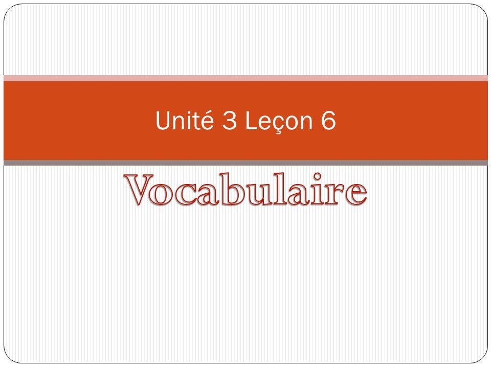Unité 3 Leçon 6