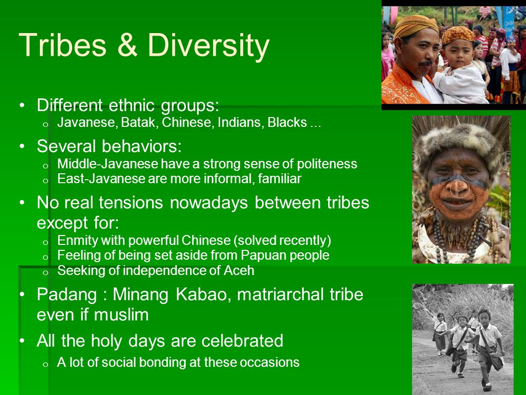 Tribes & Diversity Different ethnic groups: o Javanese, Batak, Chinese, Indians, Blacks... Several behaviors: o Middle-Javanese have a strong sense of