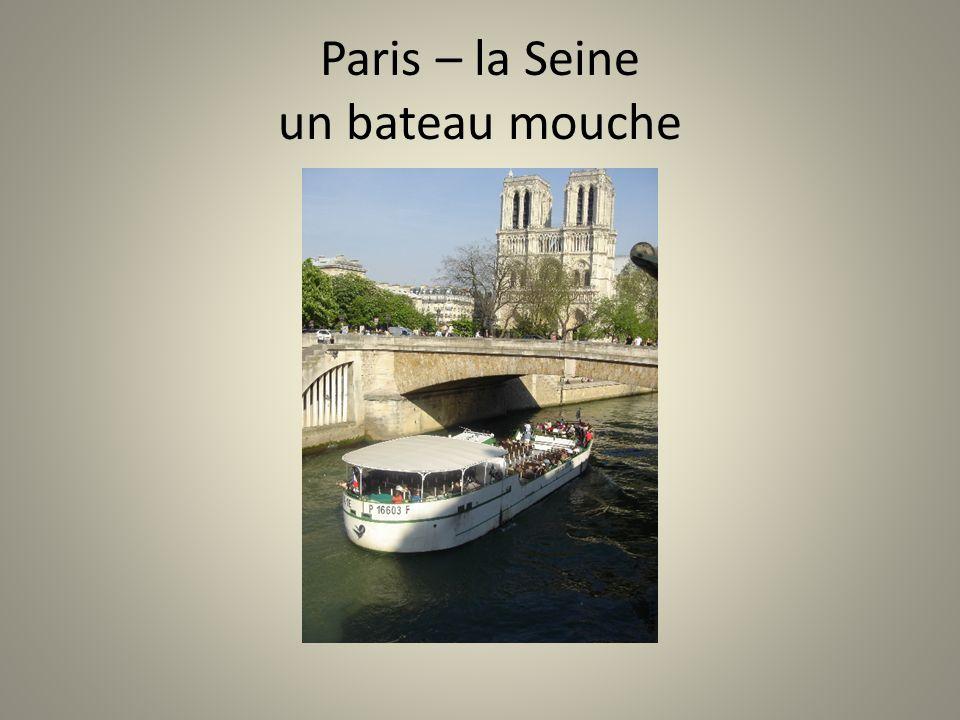 Paris – la Seine un bateau mouche