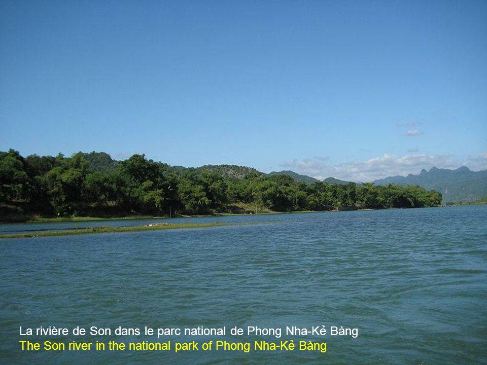 Bateaux qui servent aux touristes à Phong Nha-K Bàng,commune de Sơn Trch, arrondissement de B Trch, province de Qung Bình.