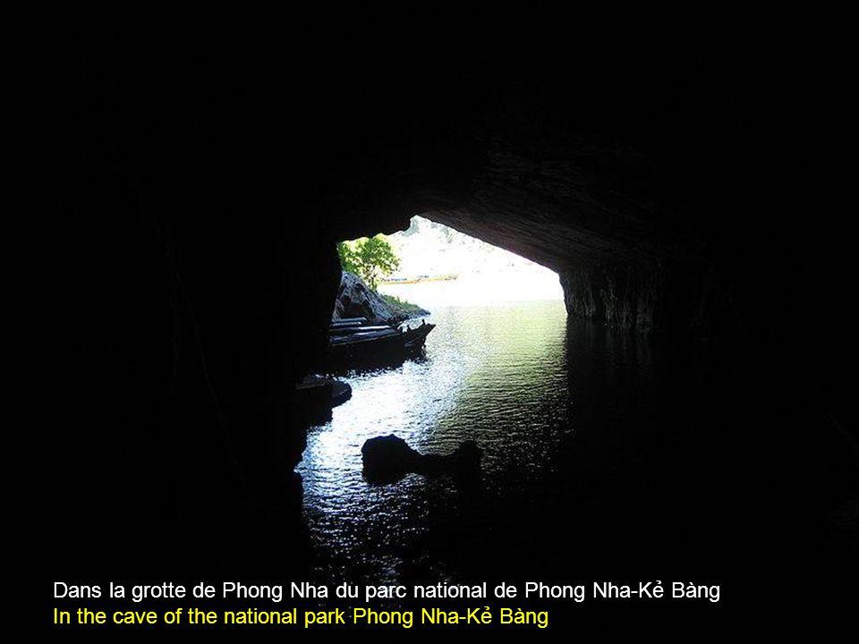L'entrée de la rivière souterraine dans la grotte de Phong Nha Entrance of the underground river in the cave of Phong Nha