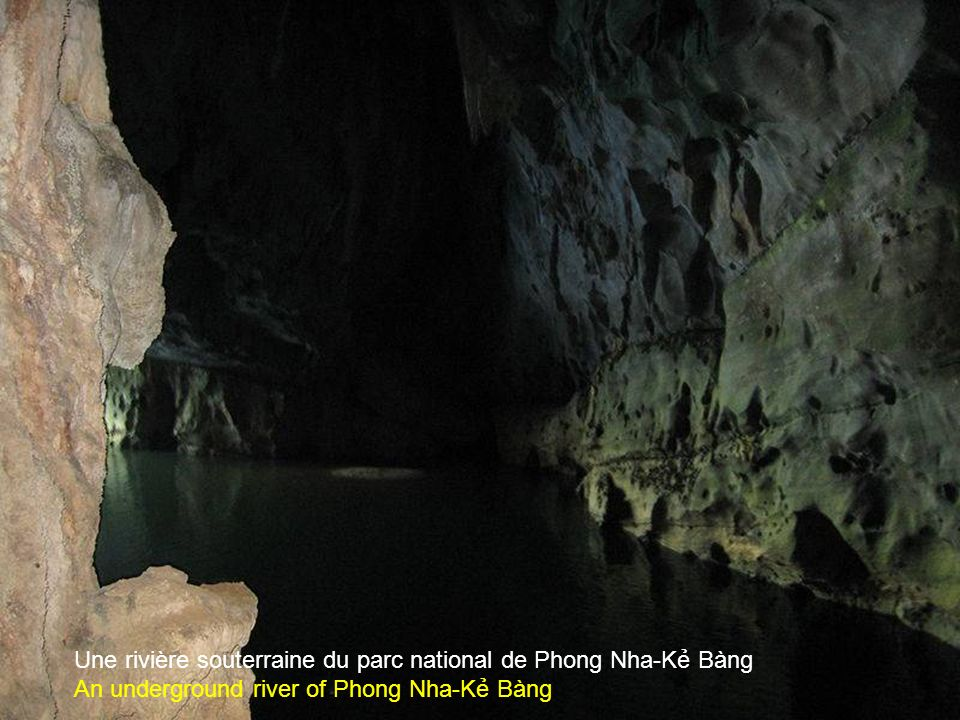 Dans la grotte de Phong Nha du parc national de Phong Nha-K Bàng In the cave of the national park Phong Nha-K Bàng