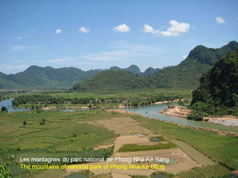 Une rivière souterraine du parc national de Phong Nha-K Bàng An underground river of Phong Nha-K Bàng