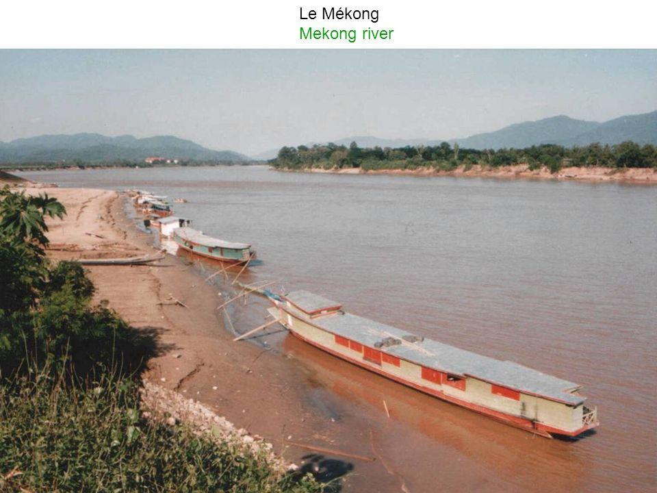 Le transport de marchandises et bateau de pêche sur le Mékong (Viêt Nam) The transport of goods and fishing boats on the Mekong river (Vit Nam)