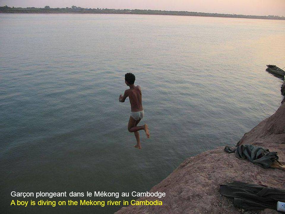 Le Mékong Mekong river
