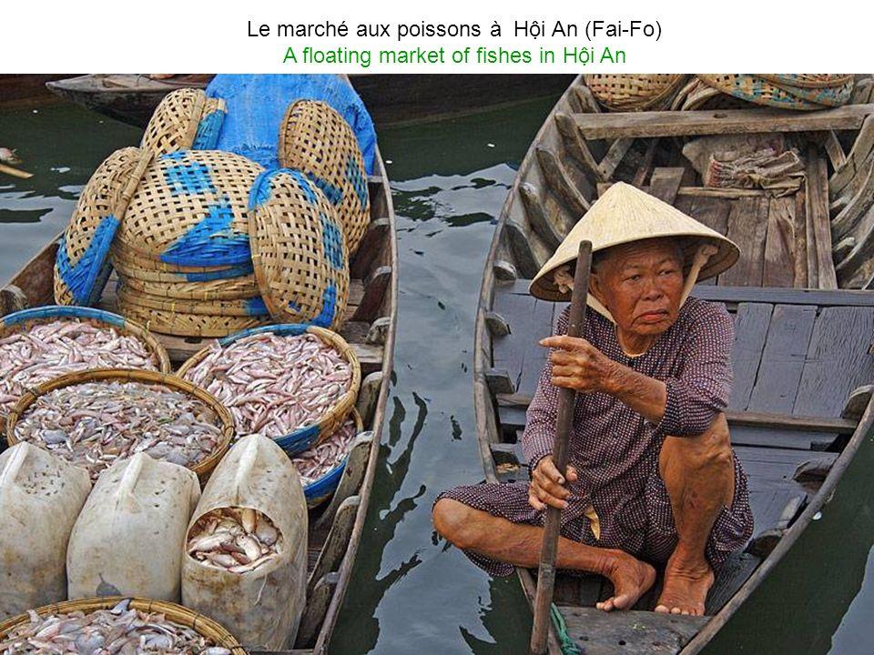 Hi An (ex Fai-Fo ) Hoi Han, classée au patrimoine mondial de LUNESCO Hi An (ex name Fai-Fo) Hoi Han, recognized by UNESCO as the World Heritage