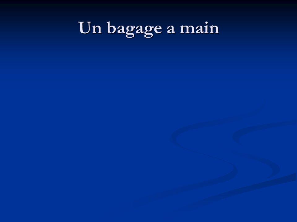 Un bagage a main