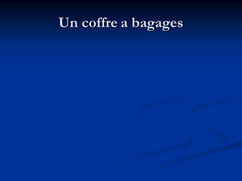 Un coffre a bagages
