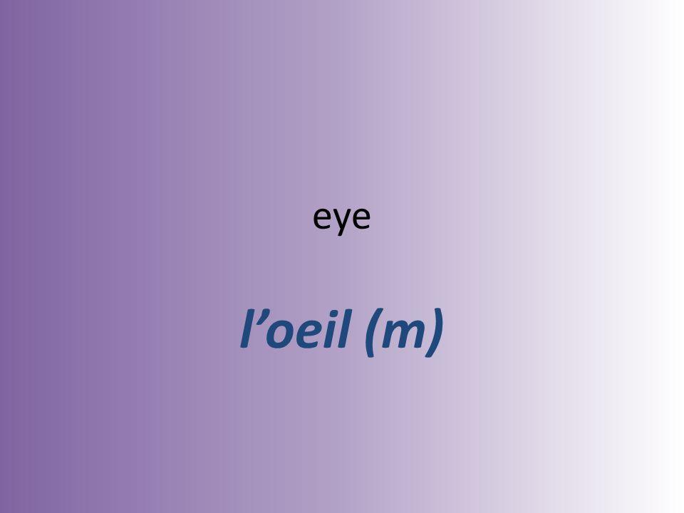 eye loeil (m)