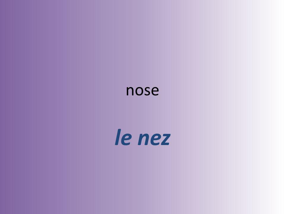 nose le nez