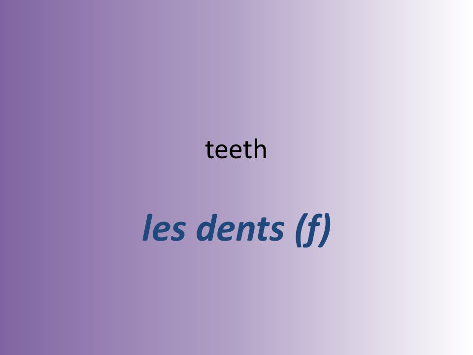 teeth les dents (f)