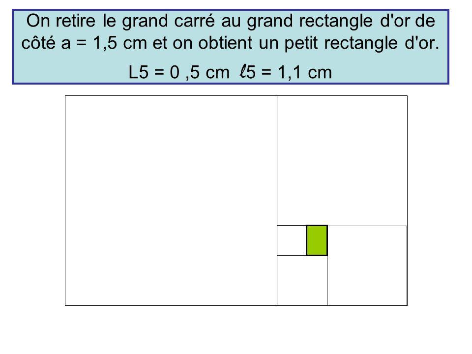 On retire le grand carré au grand rectangle d'or de côté a = 1,5 cm et on obtient un petit rectangle d'or. L5 = 0,5 cm l 5 = 1,1 cm